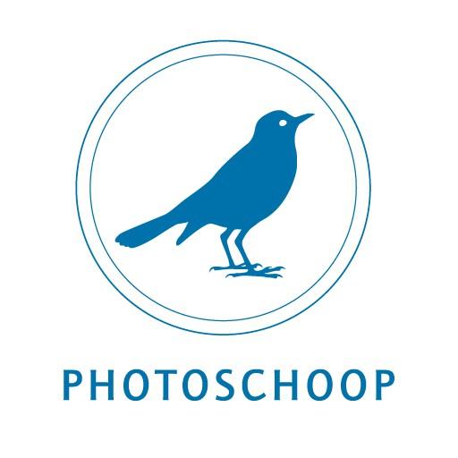cropped-Photoschoop_Logo_512px.jpg